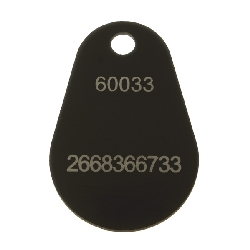 Key Fob Epoxy Mifare 4k